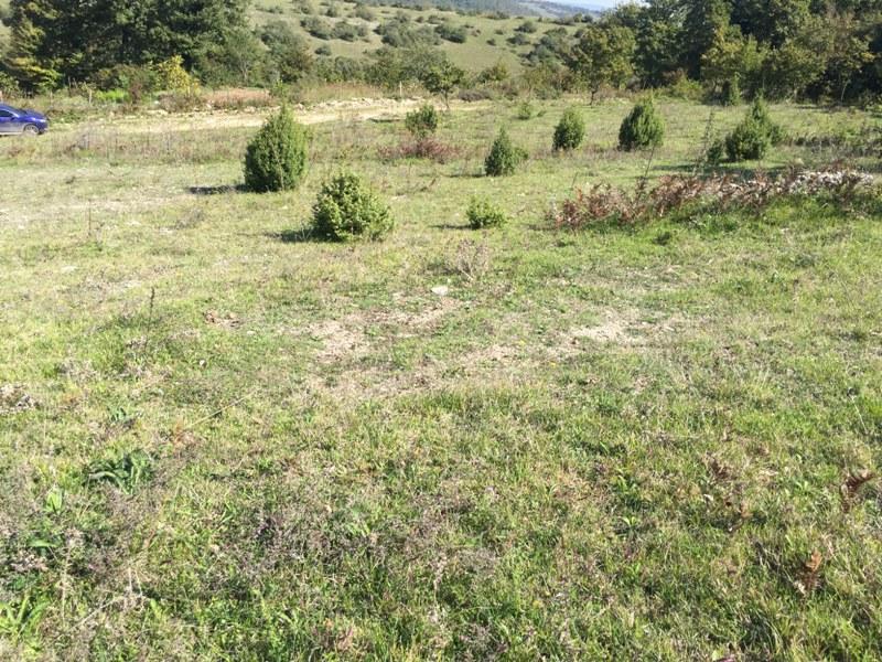 Kandırada satılık arsa,arazi,tarla