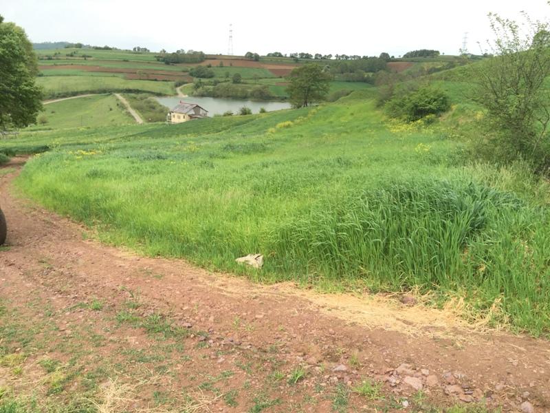 Sahibinden Kandıra Araman Köyünde Satılık Tarla