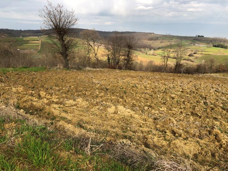 KAÇMAZ'dan Kandıra Seyitaliler'de Yol Cepheli Satılık Arazi